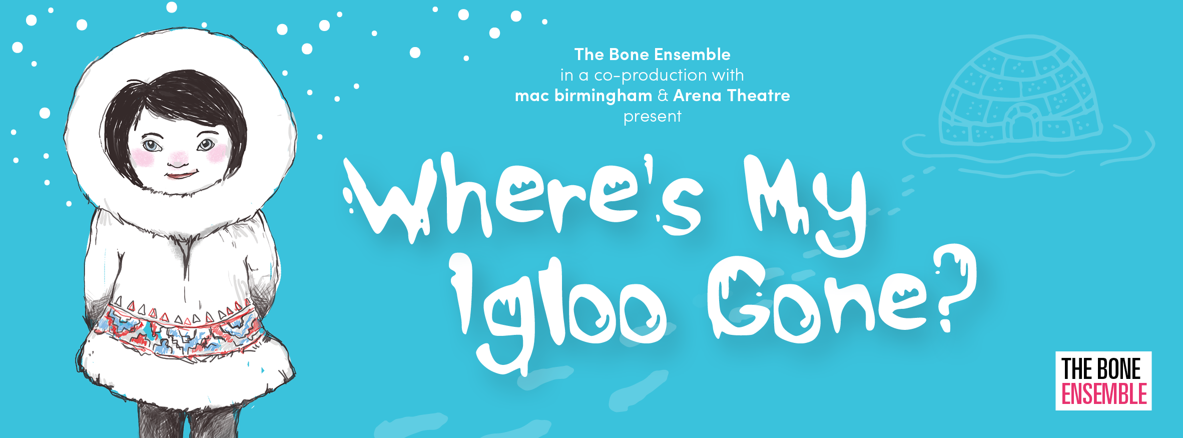 Where's My Igloo Gone? promotional banner